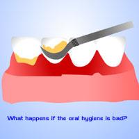 oral hygiene Stamford